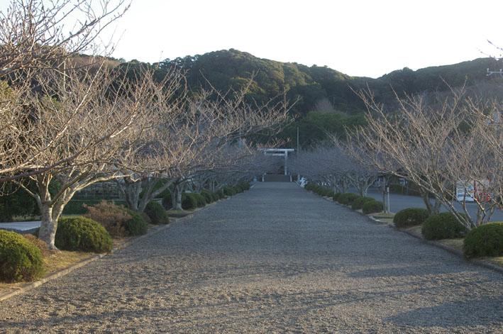安房国一之宮・安房神社は清らかで威厳を備えていた_c0014967_1024521.jpg