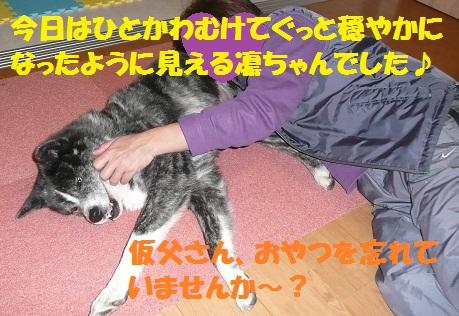 f0121712_22372232.jpg