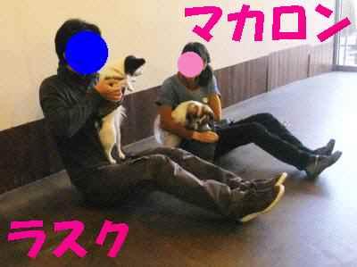 b0165139_19195472.jpg