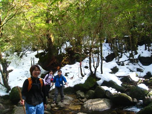 太鼓岩の雪、 美しい。_b0160957_17272685.jpg