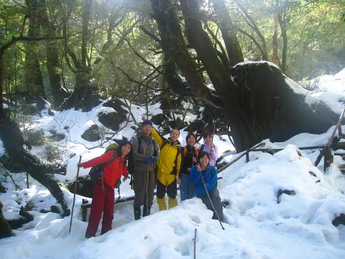 太鼓岩の雪、 美しい。_b0160957_1733541.jpg