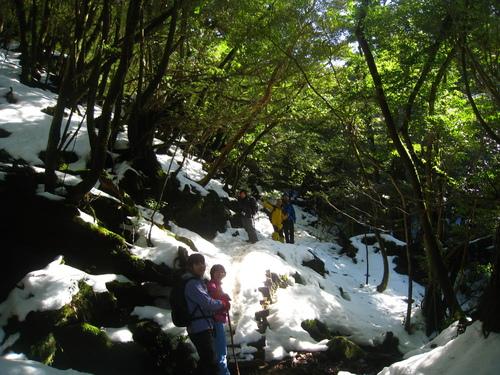 太鼓岩の雪、 美しい。_b0160957_18009.jpg