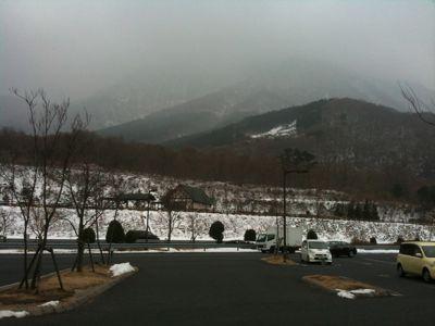 雪_b0199365_21562859.jpg