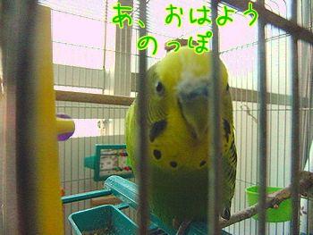 f0196665_154467.jpg