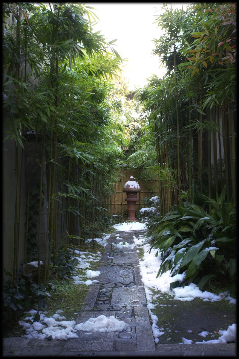 雪景色 <西尾>_f0021869_23371239.jpg
