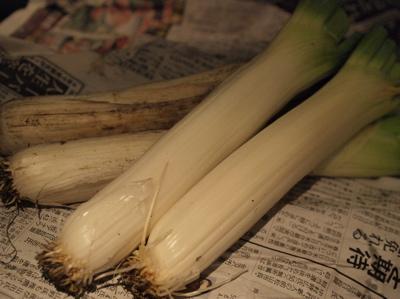 野菜_f0232994_812853.jpg
