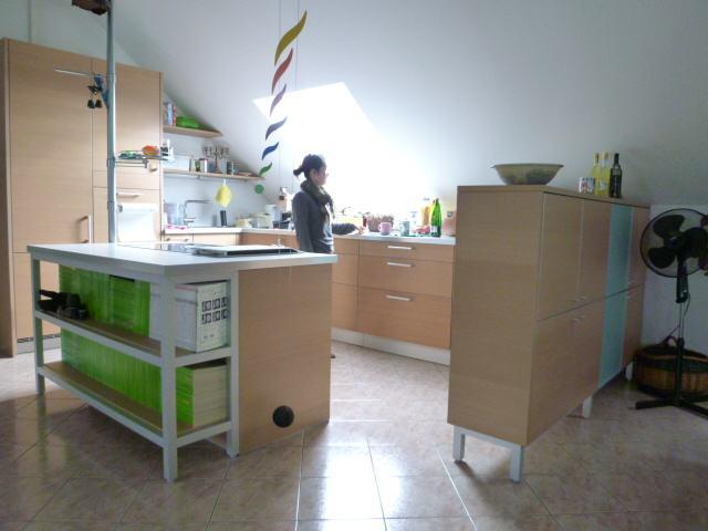 ドイツのキッチンリフォーム 再び_a0116902_22542655.jpg