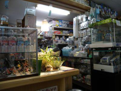 店舗潜入その3とジャパンラミレジィ画像_a0193105_713097.jpg