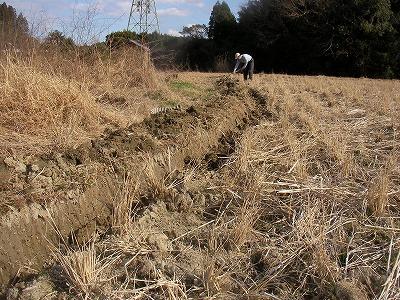 宮崎自然農園・1月8日~10日。3連休で~す!_b0181417_16391481.jpg