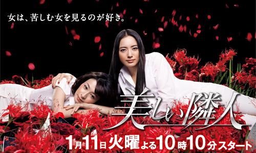 2011年の冬のドラマ_e0192740_5184576.jpg