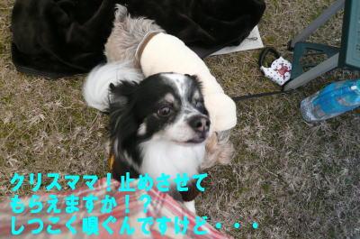 d0013645_2223878.jpg