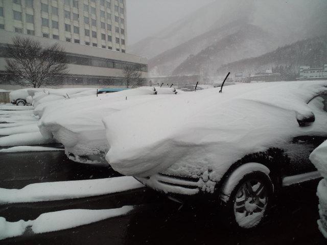 今日の かぐらスキー場_c0151965_23455712.jpg