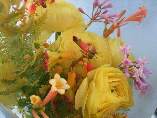オークリーフ( 金葉アカシアと黄色いラナンキュラスの花束)_f0049672_18325036.jpg