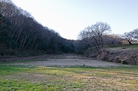 黒川散歩_c0002682_9593685.jpg