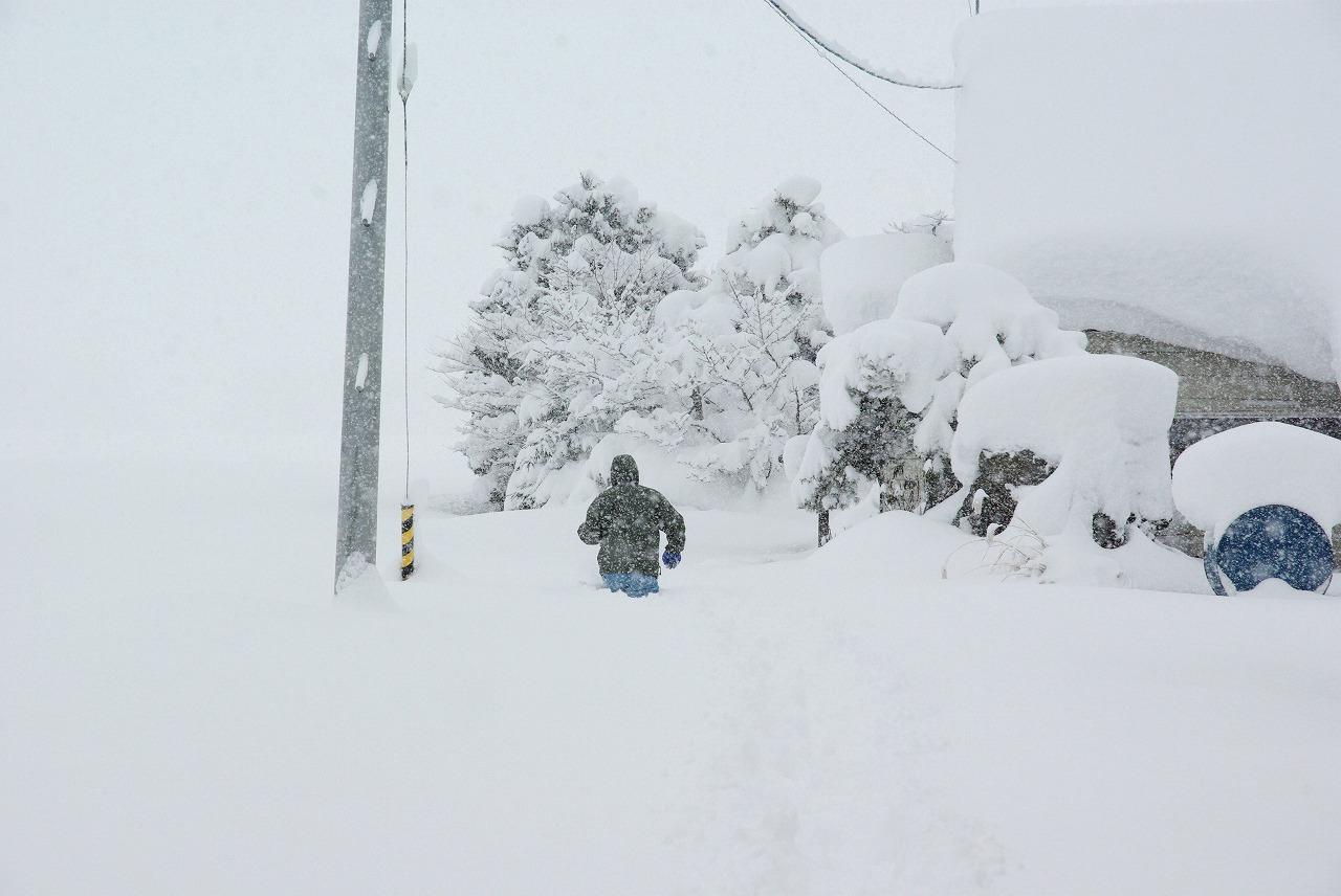 すっぽり雪の中_a0107184_1464624.jpg