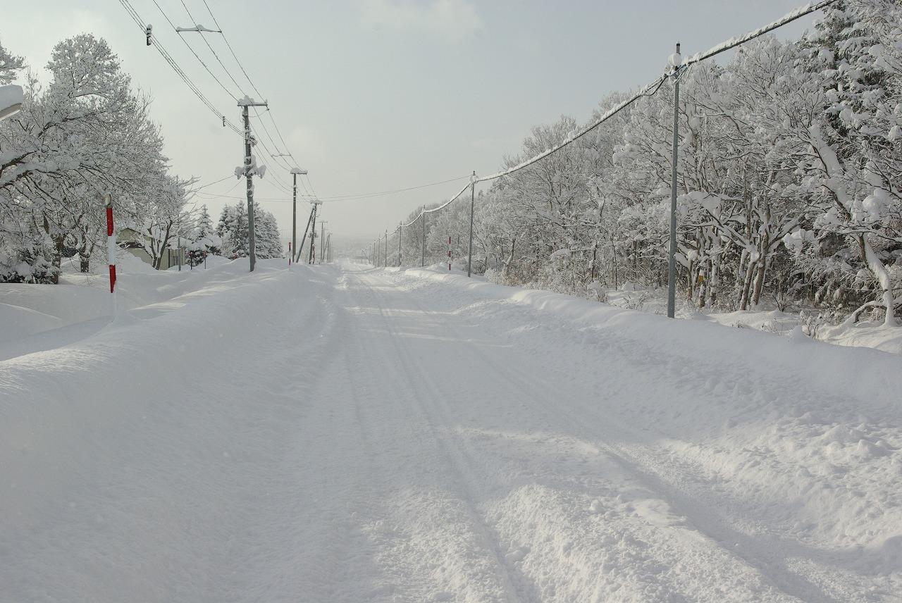 すっぽり雪の中_a0107184_1514972.jpg