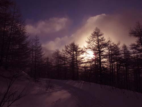 寒冷の朝_e0120896_102527100.jpg