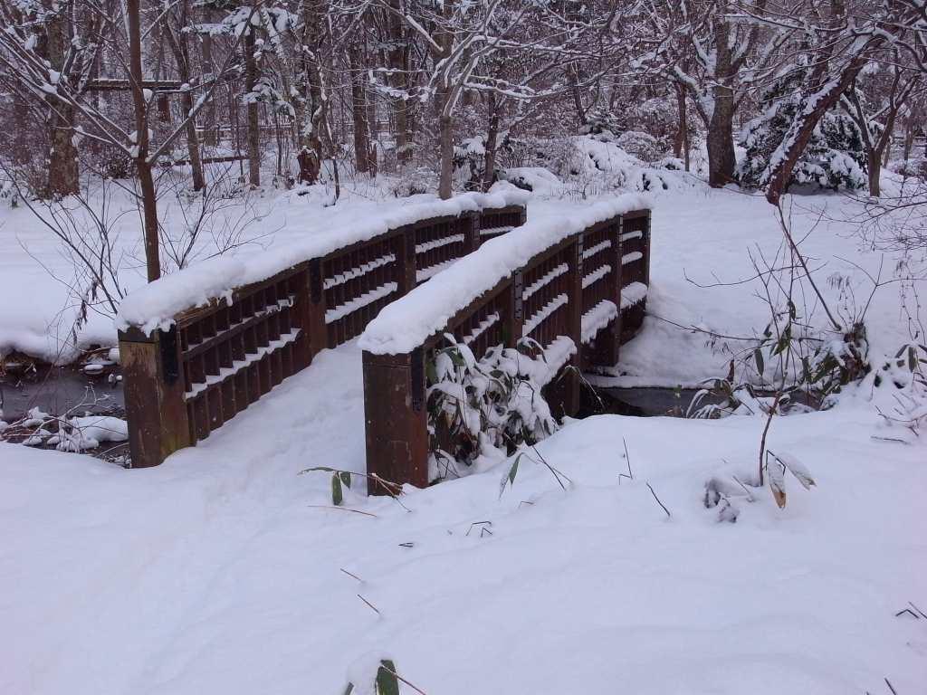 歩くスキーコース_f0138096_9364240.jpg