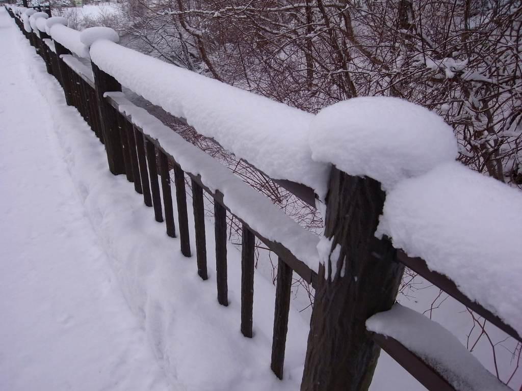 歩くスキーコース_f0138096_9365466.jpg