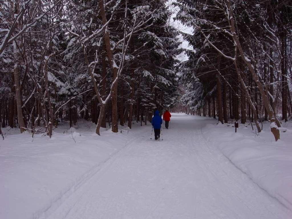 歩くスキーコース_f0138096_9381428.jpg
