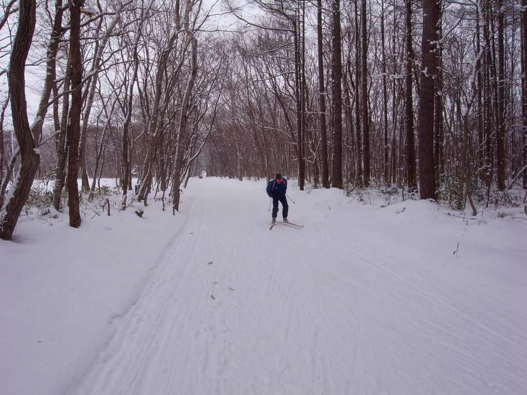 歩くスキーコース_f0138096_9384931.jpg