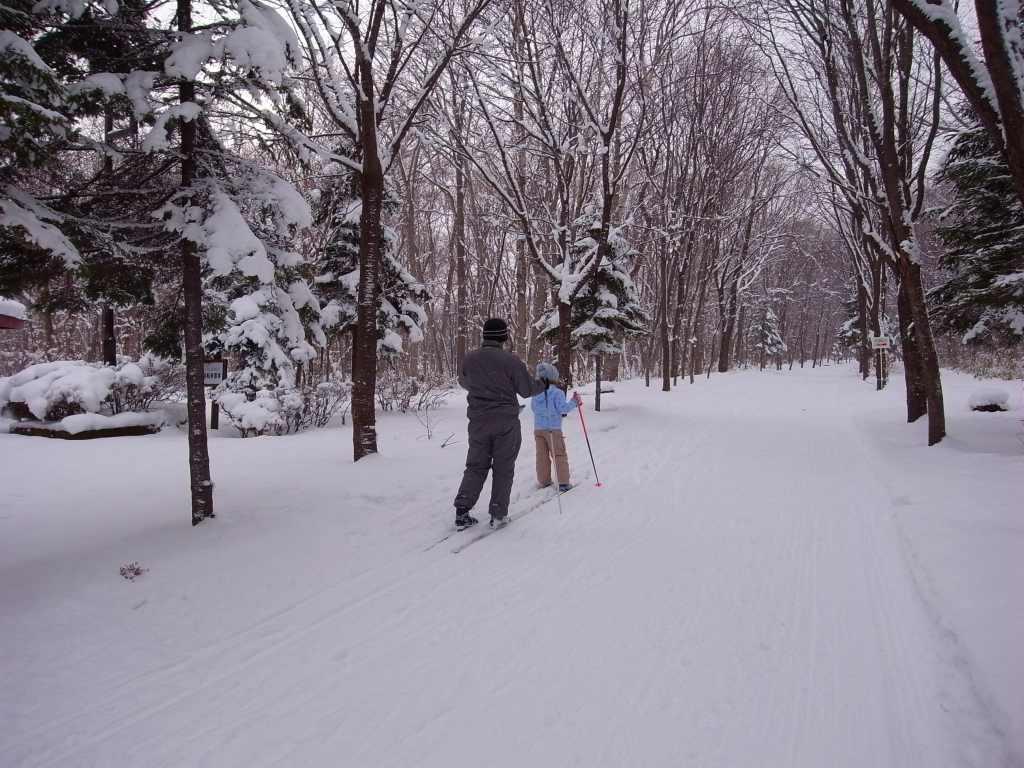 歩くスキーコース_f0138096_939178.jpg