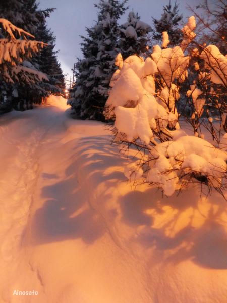 正月は楽だったんだけどね。。。。_b0103798_720593.jpg