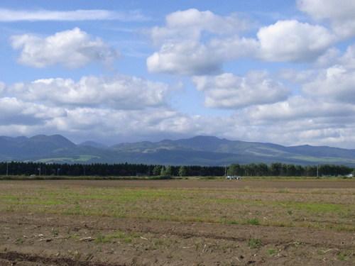 北海道でじゃがいもの収穫を見てきました_a0195310_235869.jpg