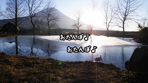f0129214_9413682.jpg
