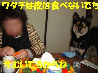 c0211642_12352694.jpg