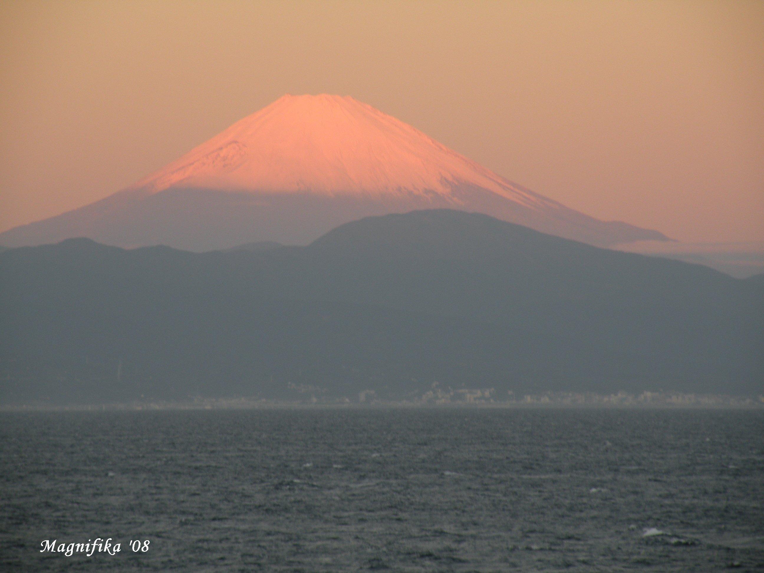 ぱしふぃっく びいなす Pacific Venus cruise report-8 Last day of the cruise_e0140365_19282822.jpg