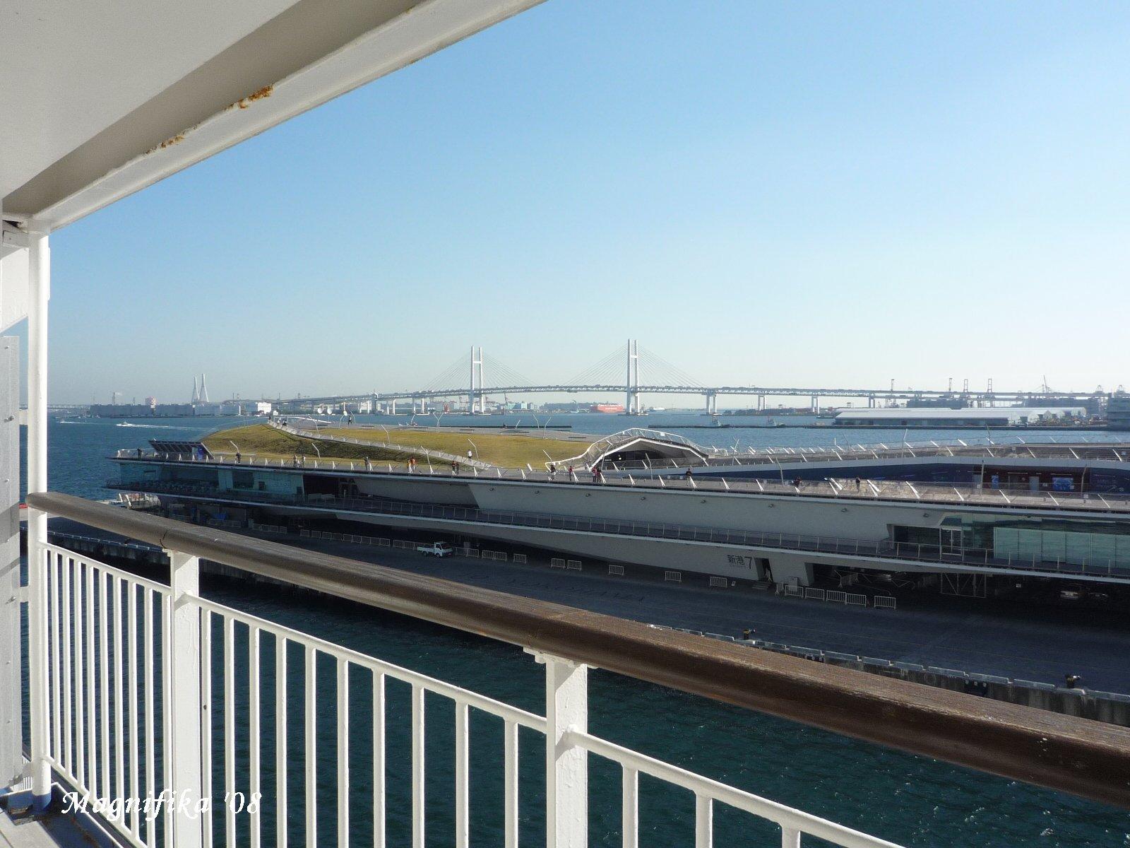 ぱしふぃっく びいなす Pacific Venus cruise report-10 Back to Yokohama_e0140365_19493741.jpg