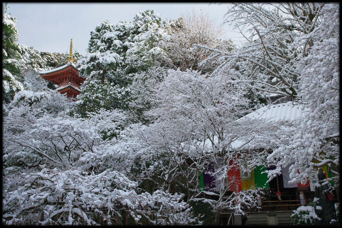 雪景色 <今熊野観音寺>_f0021869_23393618.jpg
