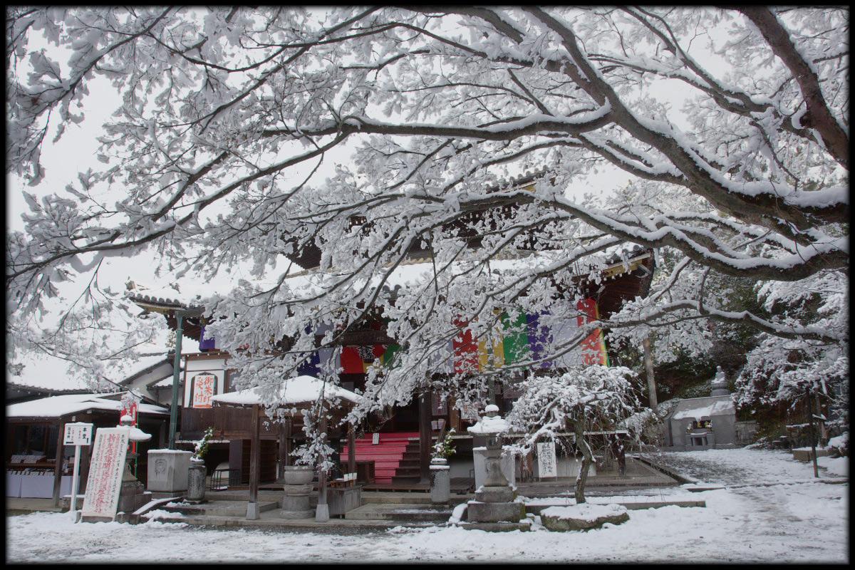 雪景色 <今熊野観音寺>_f0021869_23402688.jpg