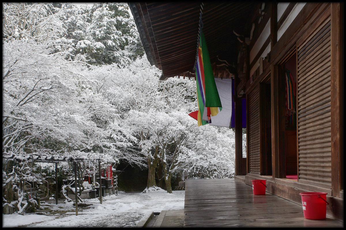 雪景色 <今熊野観音寺>_f0021869_23405734.jpg
