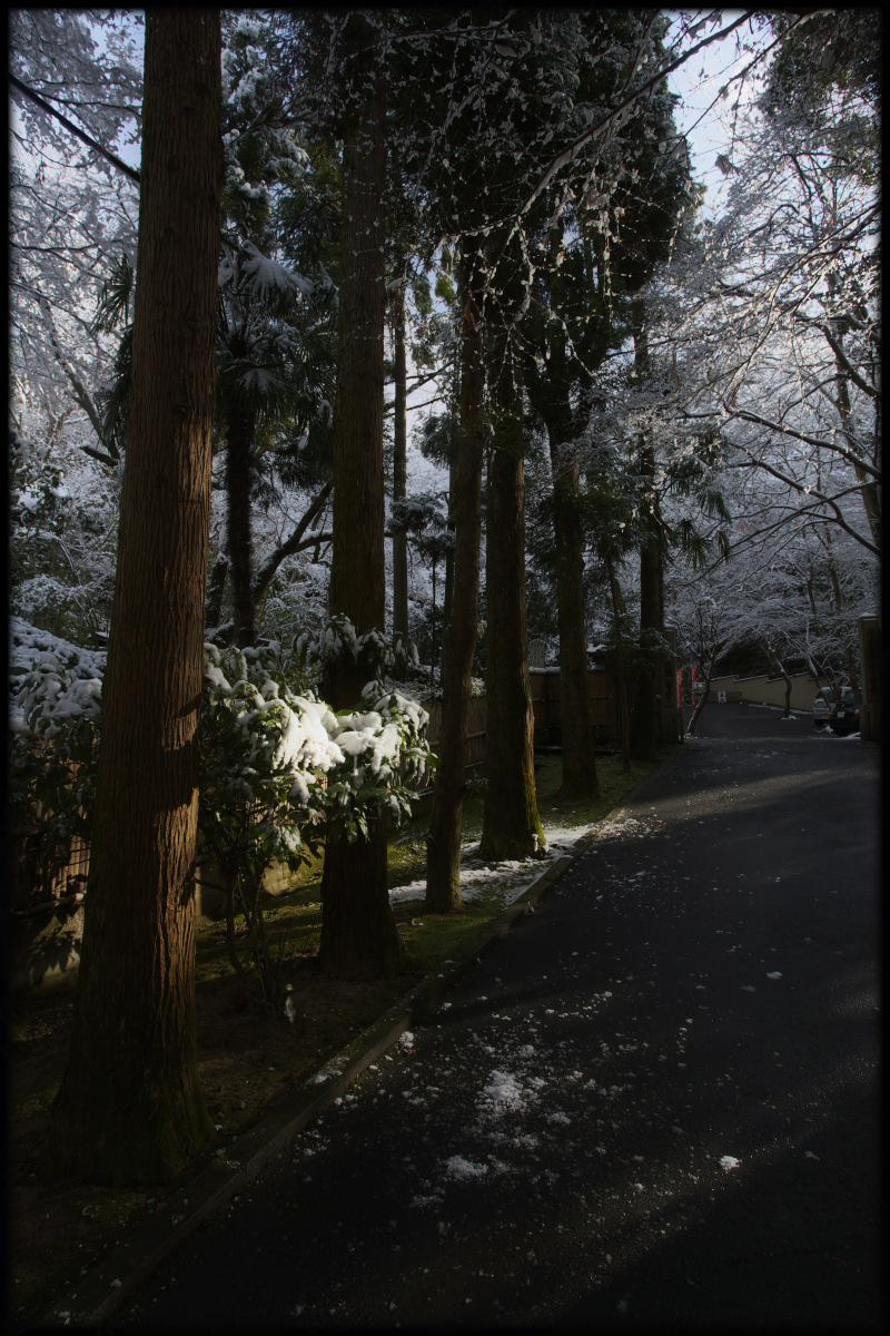 雪景色 <今熊野観音寺>_f0021869_23412025.jpg