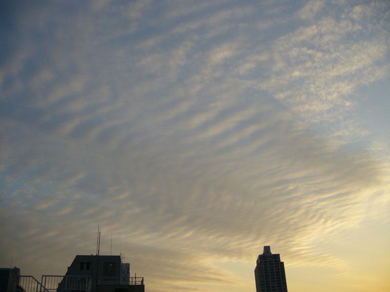 変わった雲だったので_b0156872_18451065.jpg