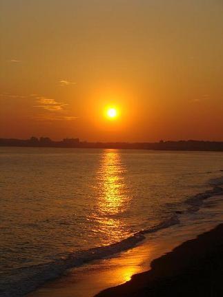 SUN SET_a0195373_169580.jpg