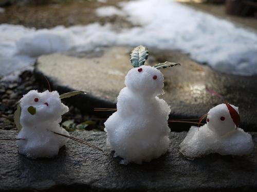 雪の庭_f0226293_9515725.jpg