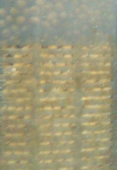 サテライトと水中ポンプ_a0193105_1902263.jpg
