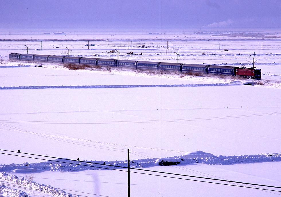 雪の朝_b0190710_23462124.jpg