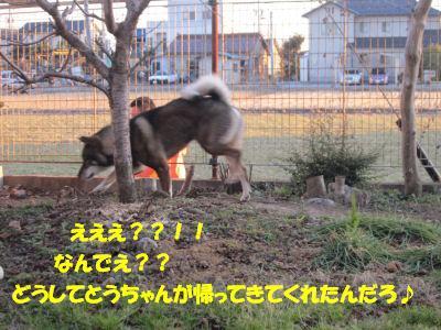f0143123_20112115.jpg
