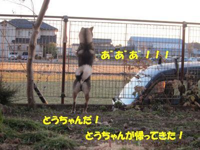 f0143123_209130.jpg