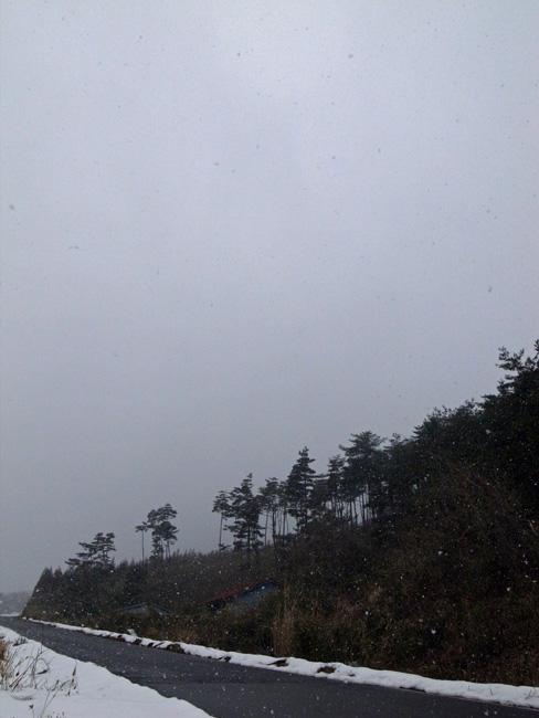 雪が降ってきた_f0137626_2121977.jpg