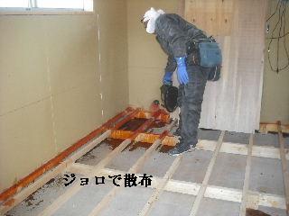 サロン工事5日目_f0031037_21175147.jpg