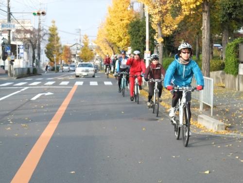 秋のサイクリング~八幡市・流れ橋 往復75km~_d0174462_10124966.jpg