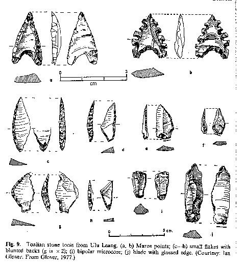 「ナイフ形石器・ナイフ形石器文化とは何か」予告編(Part4)_a0186568_252888.jpg