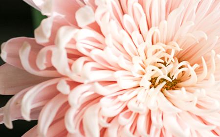 Love♡_d0158980_1493991.jpg