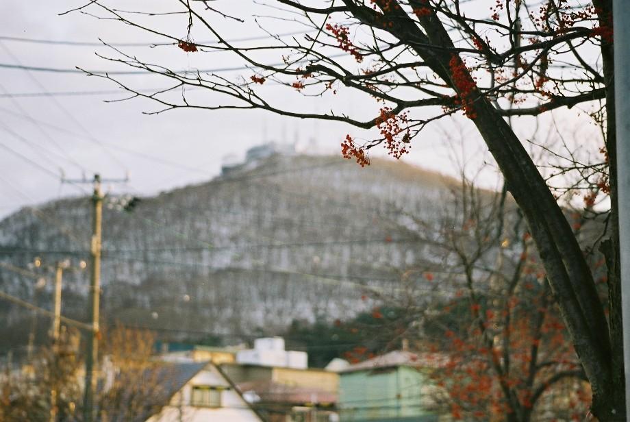 「JIN-仁」と「陽だまりの樹」_a0158797_2235124.jpg