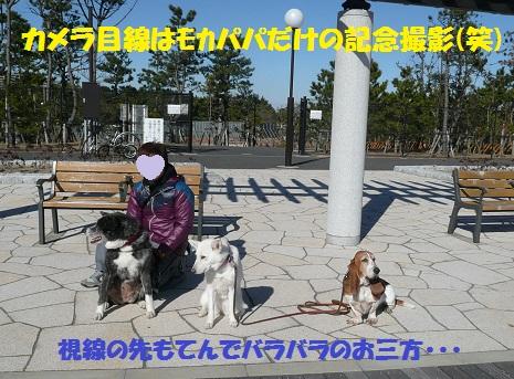 f0121712_23293035.jpg